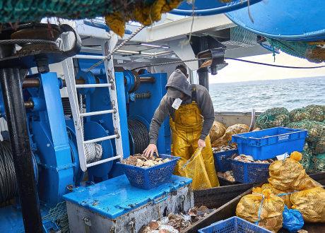 Contrôle de la pêche directement sur le bateau par un pêcheur